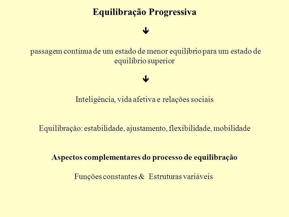 Equilibração Progressiva  passagem contínua de um estado de menor equilíbrio para um estado de equilíbrio superior  Inteligência, vida afetiva e relações sociais Equilibração: estabilidade, ajustamento, flexibilidade, mobilidade Aspectos complementares do processo de equilibração Funções constantes & Estruturas variáveis