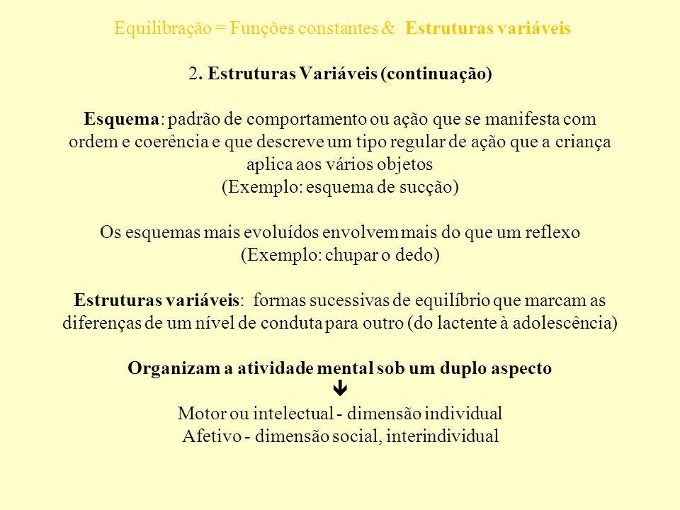 É composta por uma série de esquemas integrados Equilibração = Funções constantes & Estruturas variáveis 2.
