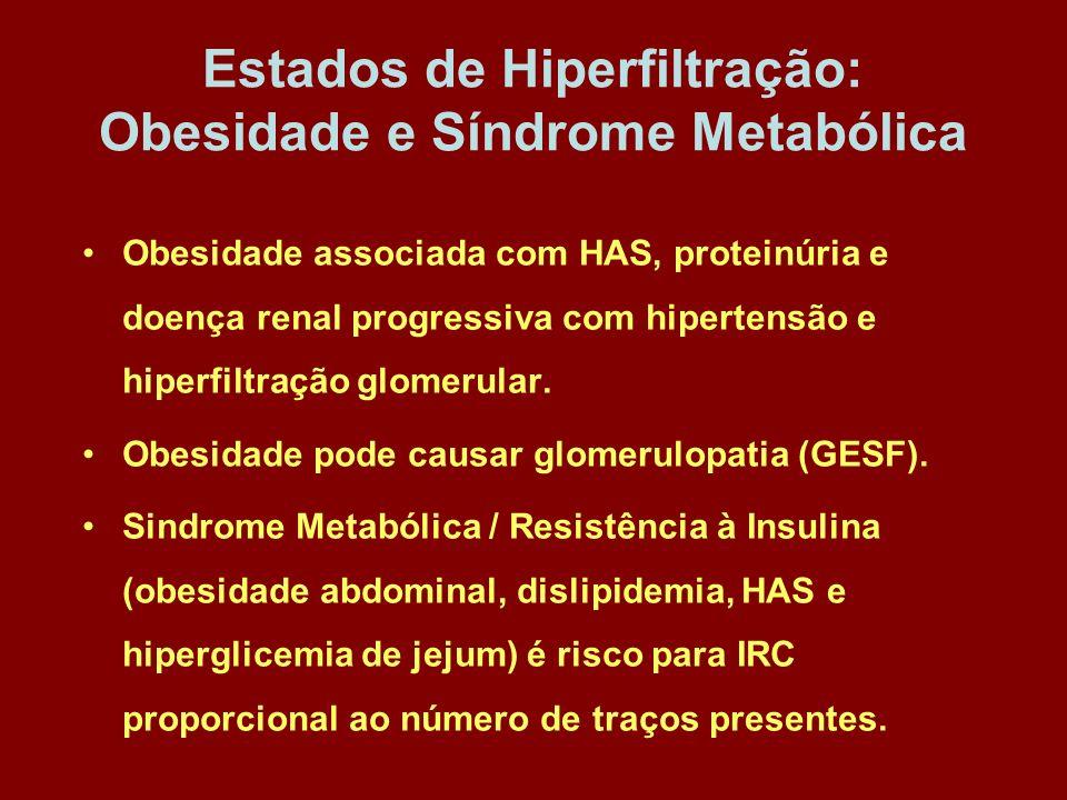 Estados de Hiperfiltração: Obesidade e Síndrome Metabólica