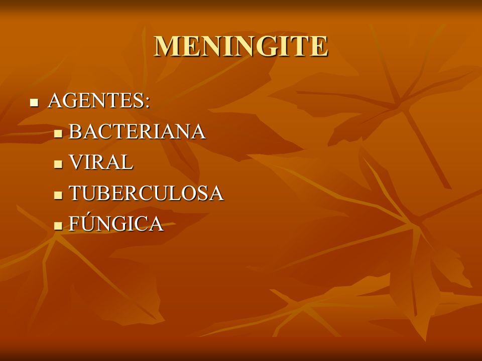 MENINGITE AGENTES: BACTERIANA VIRAL TUBERCULOSA FÚNGICA