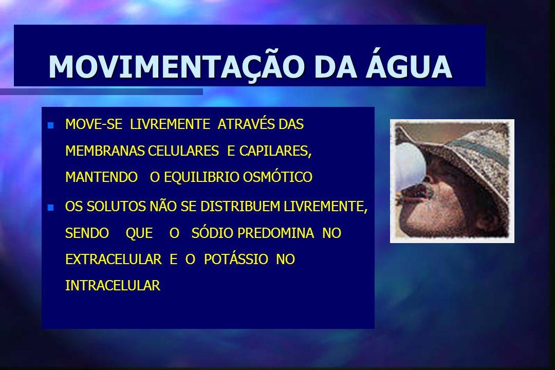 MOVIMENTAÇÃO DA ÁGUAMOVE-SE LIVREMENTE ATRAVÉS DAS MEMBRANAS CELULARES E CAPILARES, MANTENDO O EQUILIBRIO OSMÓTICO.