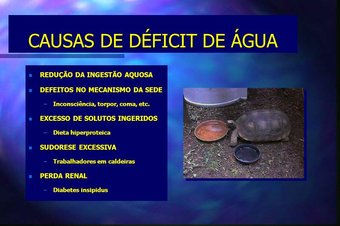 CAUSAS DE DÉFICIT DE ÁGUA