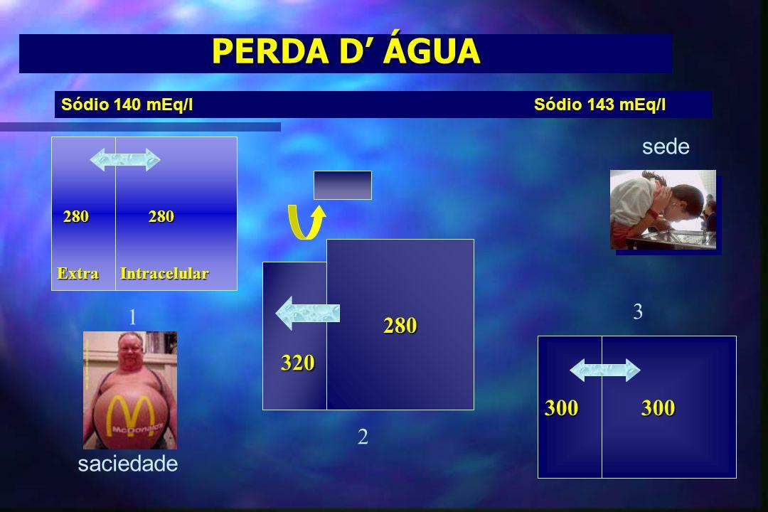 PERDA D' ÁGUA sede 280 3 1 320 300 300 2 saciedade