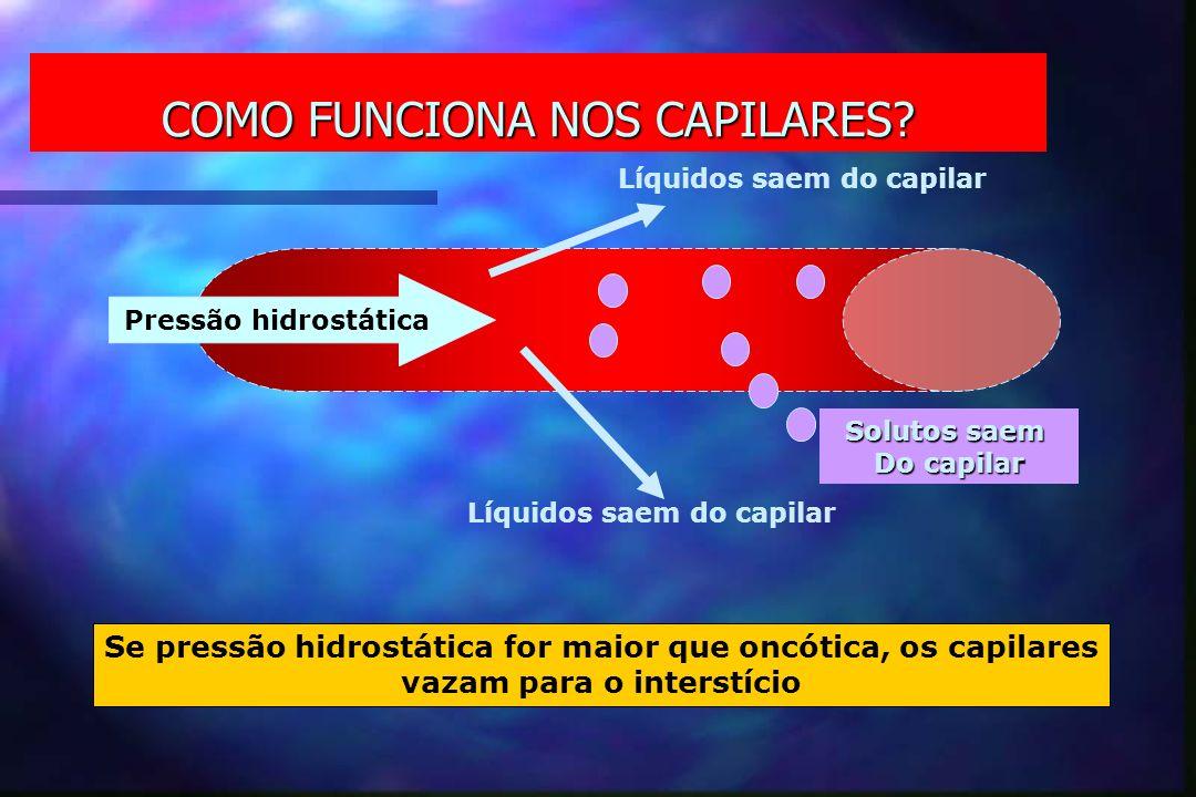 COMO FUNCIONA NOS CAPILARES