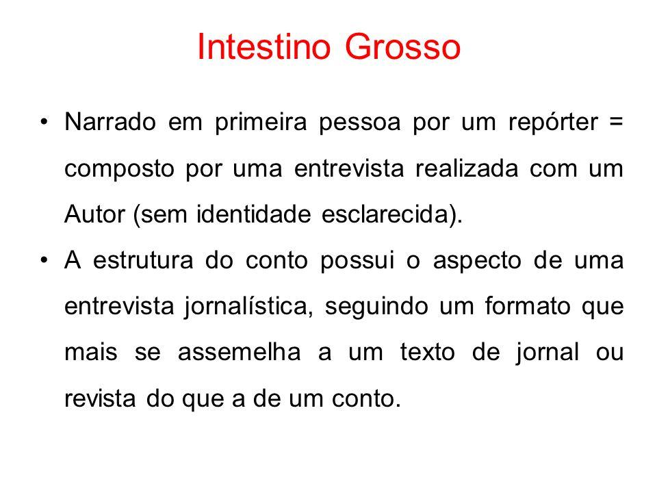 Intestino Grosso Narrado em primeira pessoa por um repórter = composto por uma entrevista realizada com um Autor (sem identidade esclarecida).