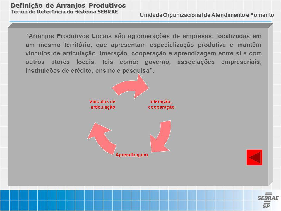Definição de Arranjos Produtivos Termo de Referência do Sistema SEBRAE
