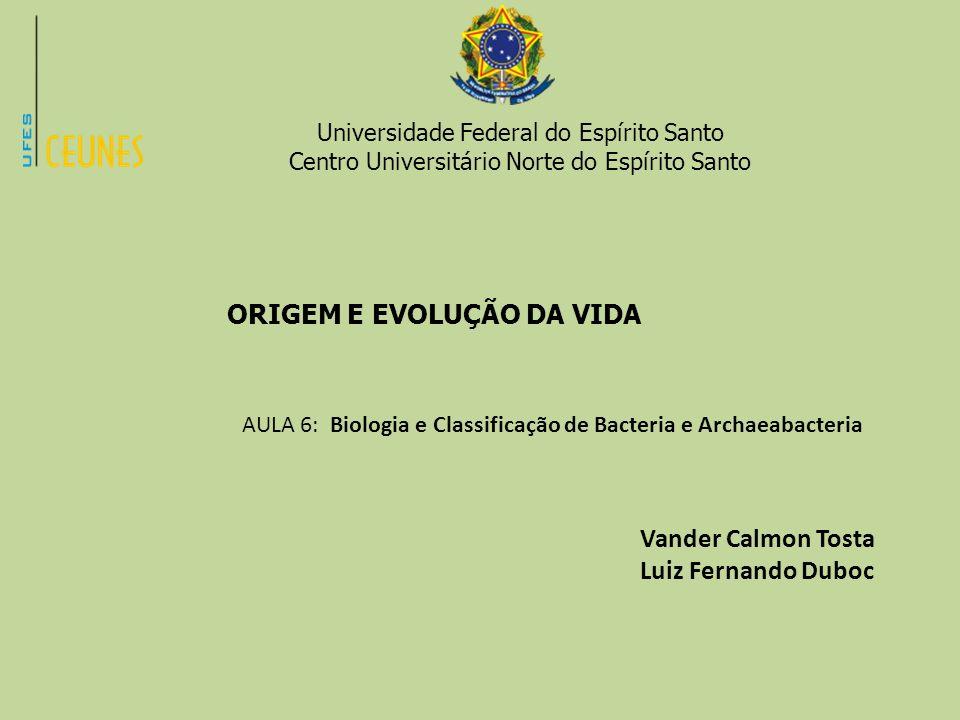 Vander Calmon Tosta Luiz Fernando Duboc