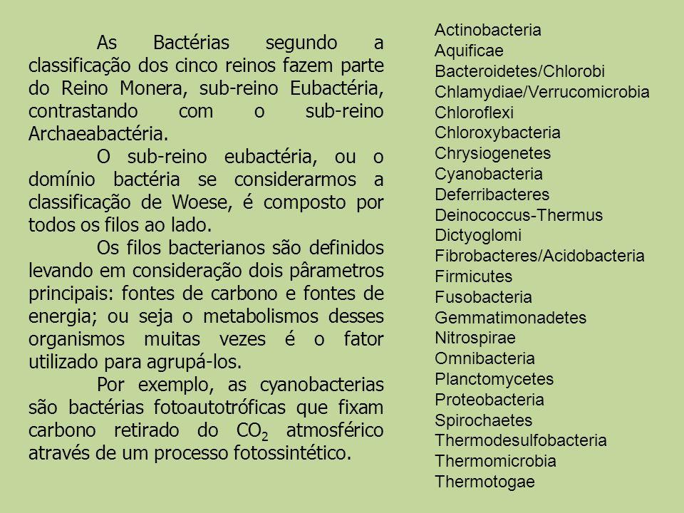 Actinobacteria Aquificae Bacteroidetes/Chlorobi Chlamydiae/Verrucomicrobia Chloroflexi Chloroxybacteria Chrysiogenetes Cyanobacteria Deferribacteres Deinococcus-Thermus Dictyoglomi Fibrobacteres/Acidobacteria Firmicutes Fusobacteria Gemmatimonadetes Nitrospirae Omnibacteria Planctomycetes Proteobacteria Spirochaetes Thermodesulfobacteria Thermomicrobia Thermotogae