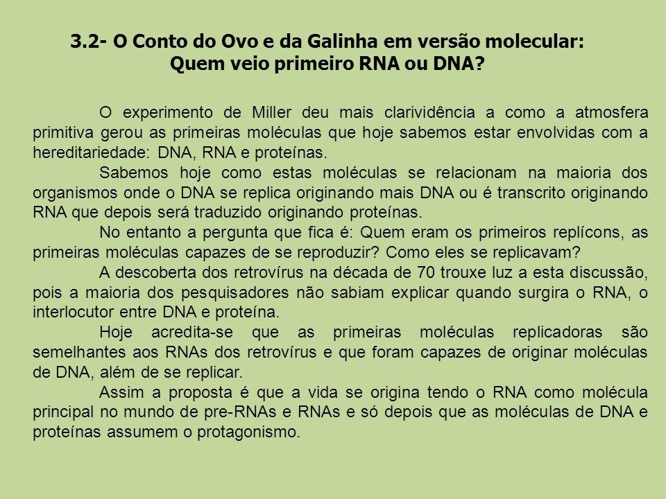 3.2- O Conto do Ovo e da Galinha em versão molecular: