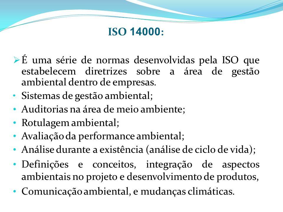 ISO 14000: É uma série de normas desenvolvidas pela ISO que estabelecem diretrizes sobre a área de gestão ambiental dentro de empresas.