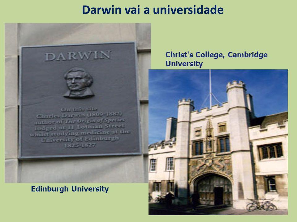 Darwin vai a universidade