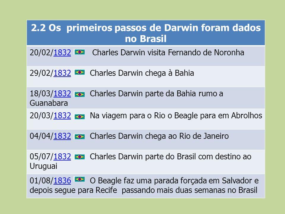 2.2 Os primeiros passos de Darwin foram dados no Brasil