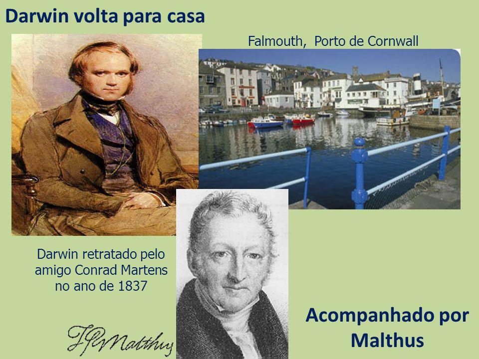 Acompanhado por Malthus