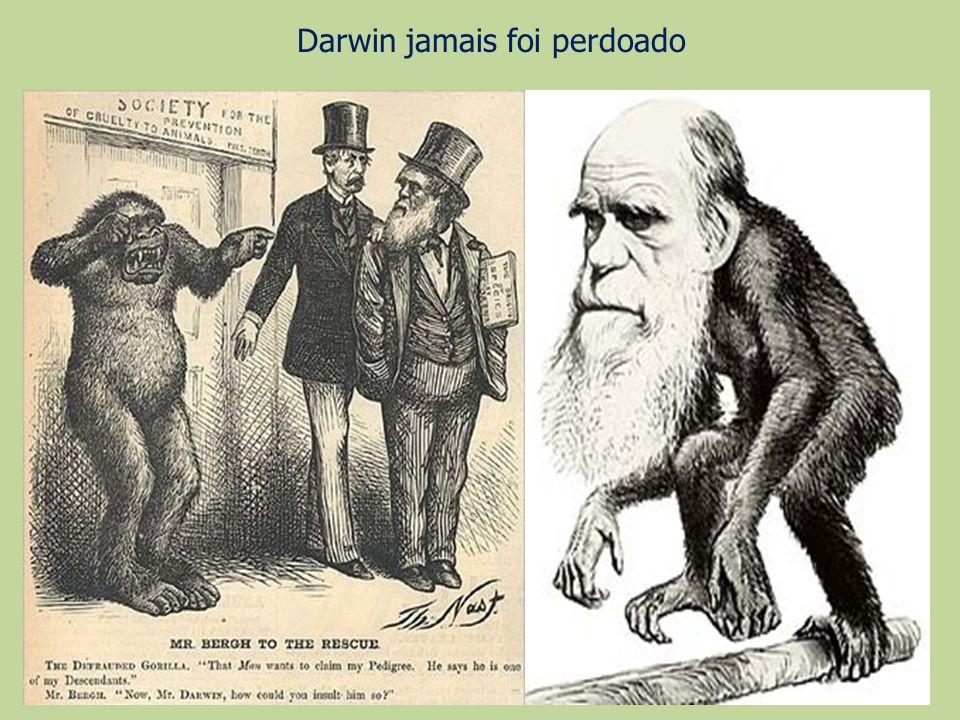 Darwin jamais foi perdoado