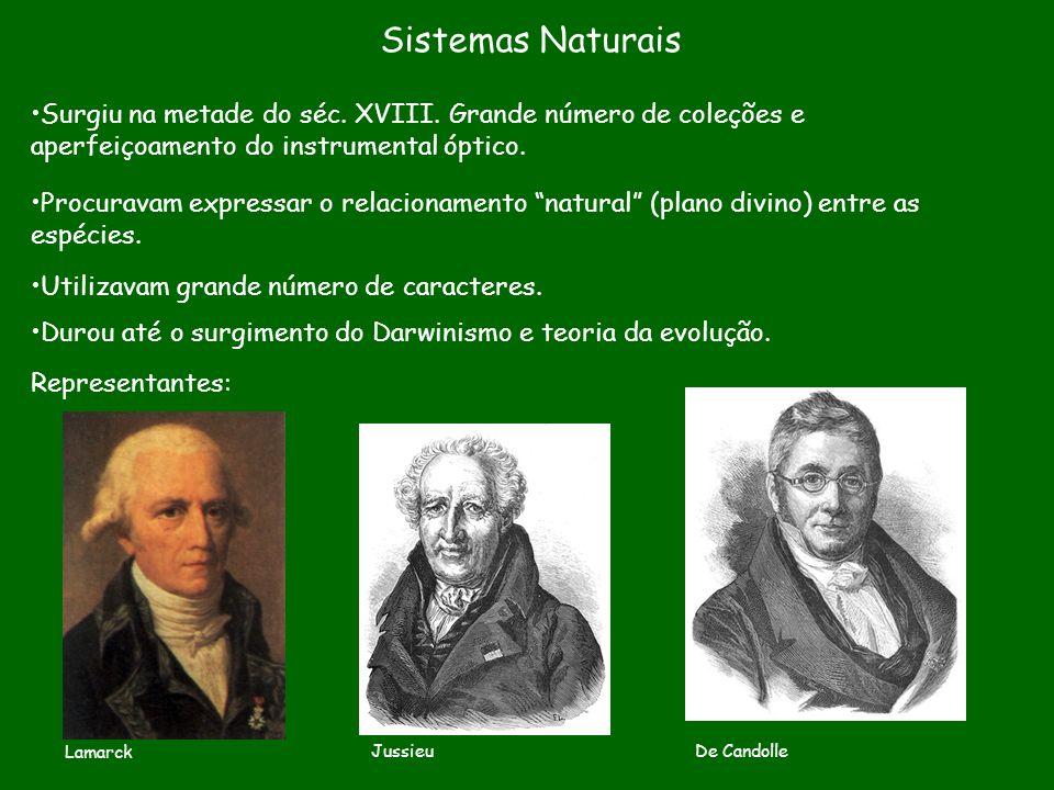 Sistemas Naturais Surgiu na metade do séc. XVIII. Grande número de coleções e aperfeiçoamento do instrumental óptico.