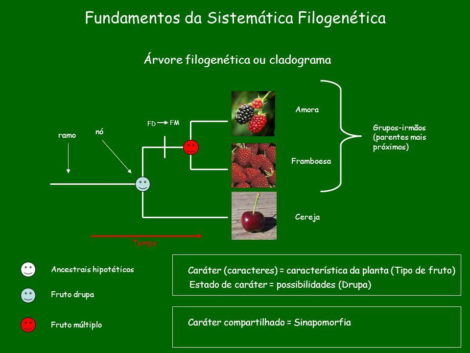 Fundamentos da Sistemática Filogenética