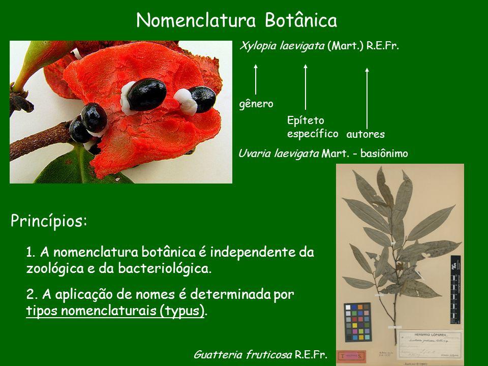 Nomenclatura Botânica