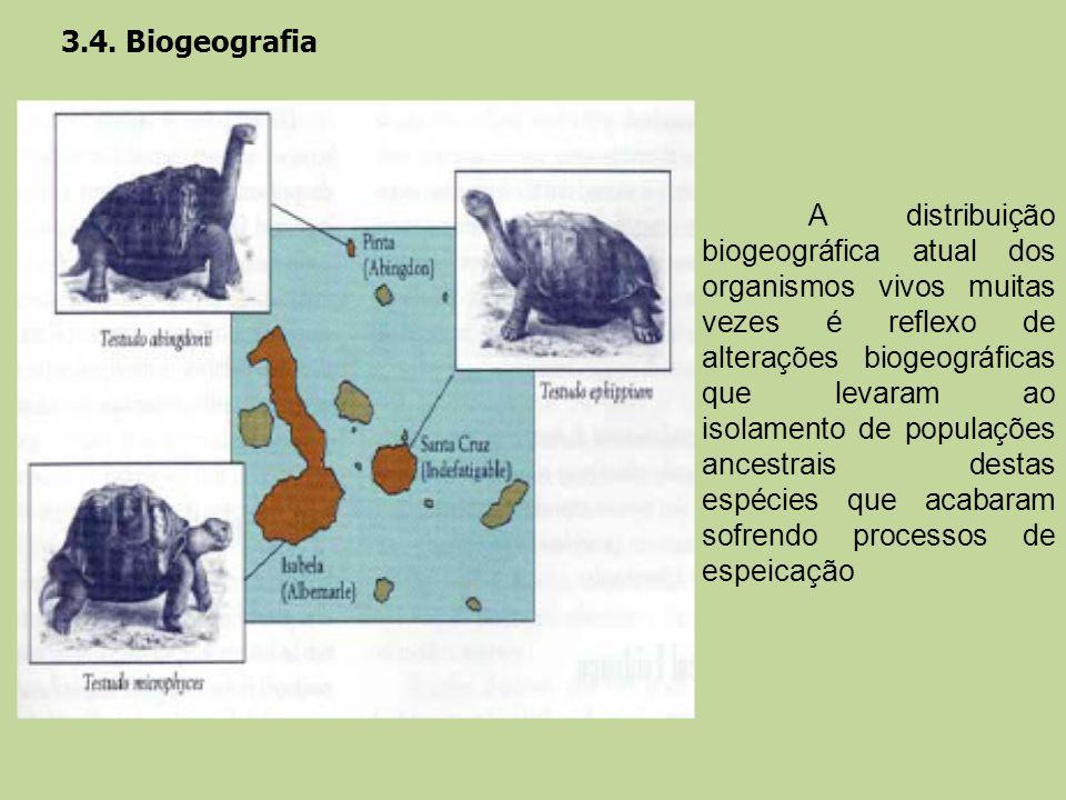 3.4. Biogeografia