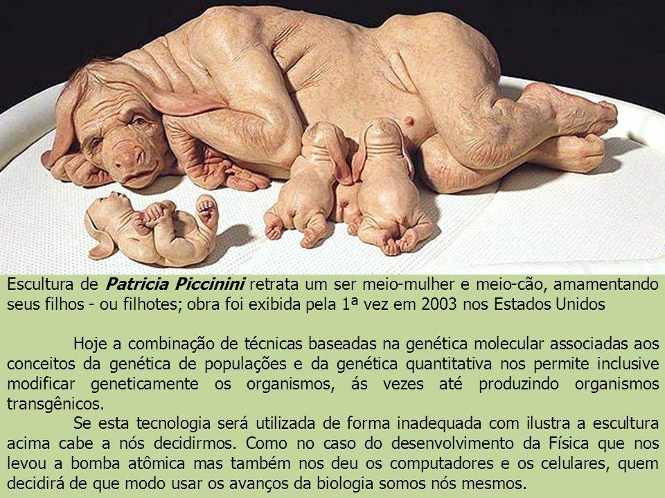 Escultura de Patricia Piccinini retrata um ser meio-mulher e meio-cão, amamentando seus filhos - ou filhotes; obra foi exibida pela 1ª vez em 2003 nos Estados Unidos
