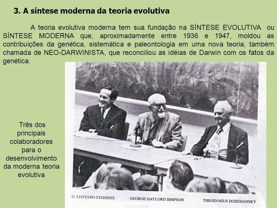 3. A síntese moderna da teoria evolutiva