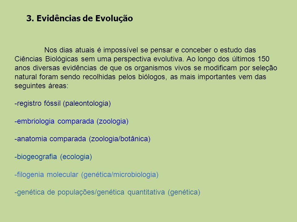 3. Evidências de Evolução