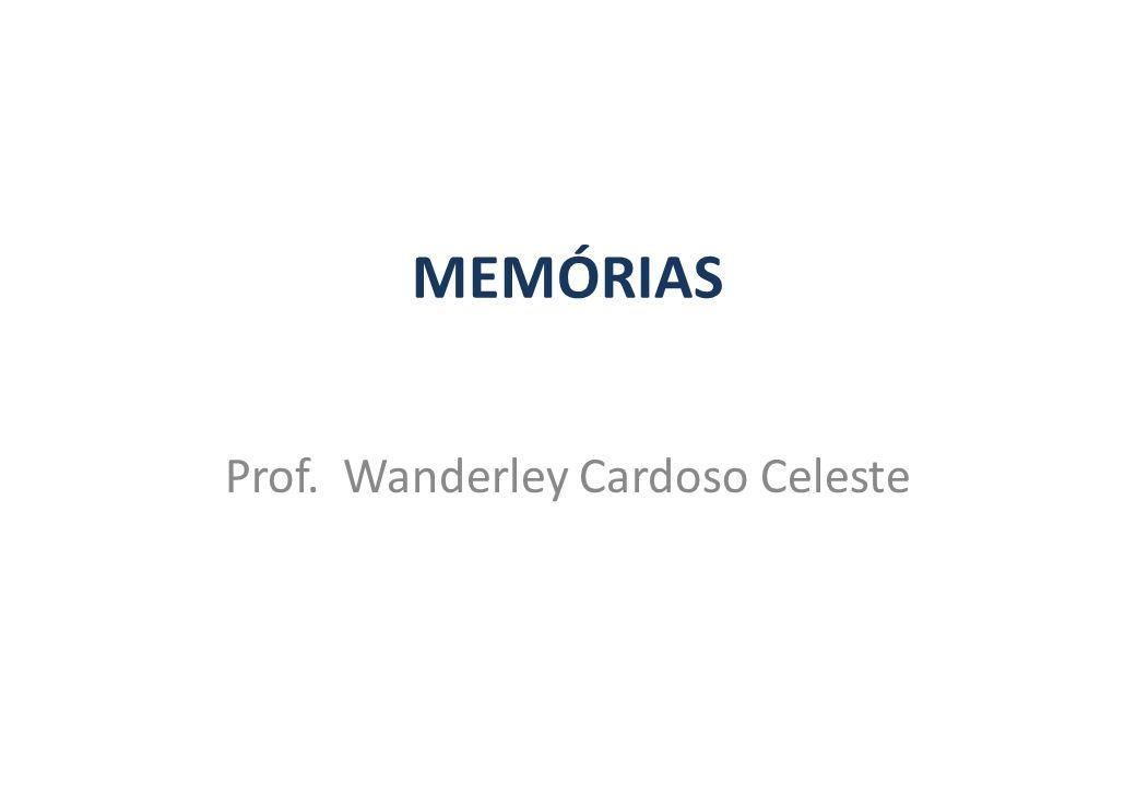 Prof. Wanderley Cardoso Celeste