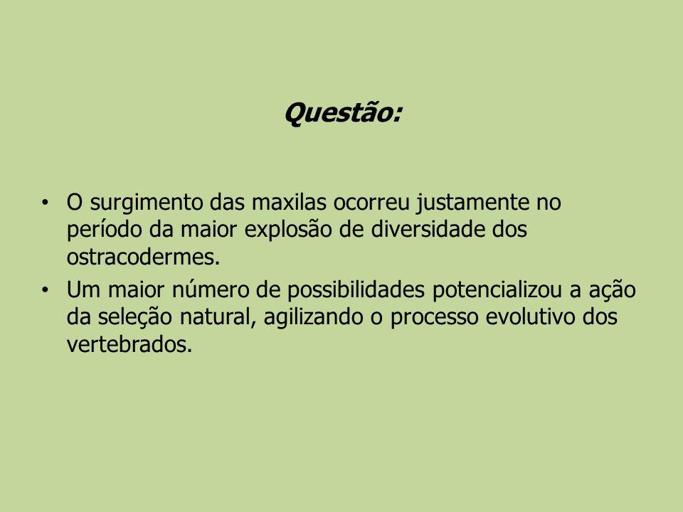 Questão: O surgimento das maxilas ocorreu justamente no período da maior explosão de diversidade dos ostracodermes.