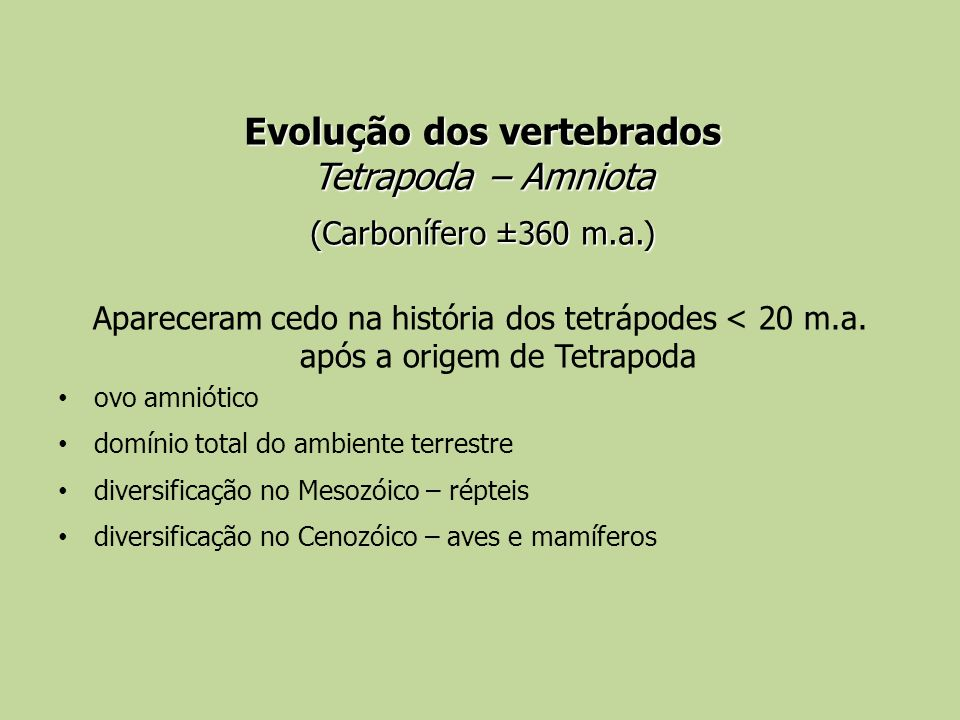 Evolução dos vertebrados Tetrapoda – Amniota (Carbonífero ±360 m.a.)