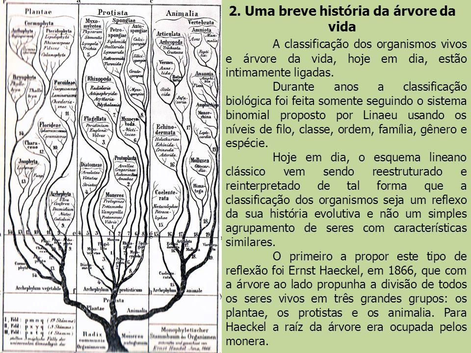 2. Uma breve história da árvore da vida