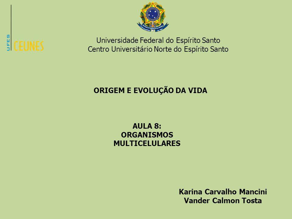 ORGANISMOS MULTICELULARES Karina Carvalho Mancini