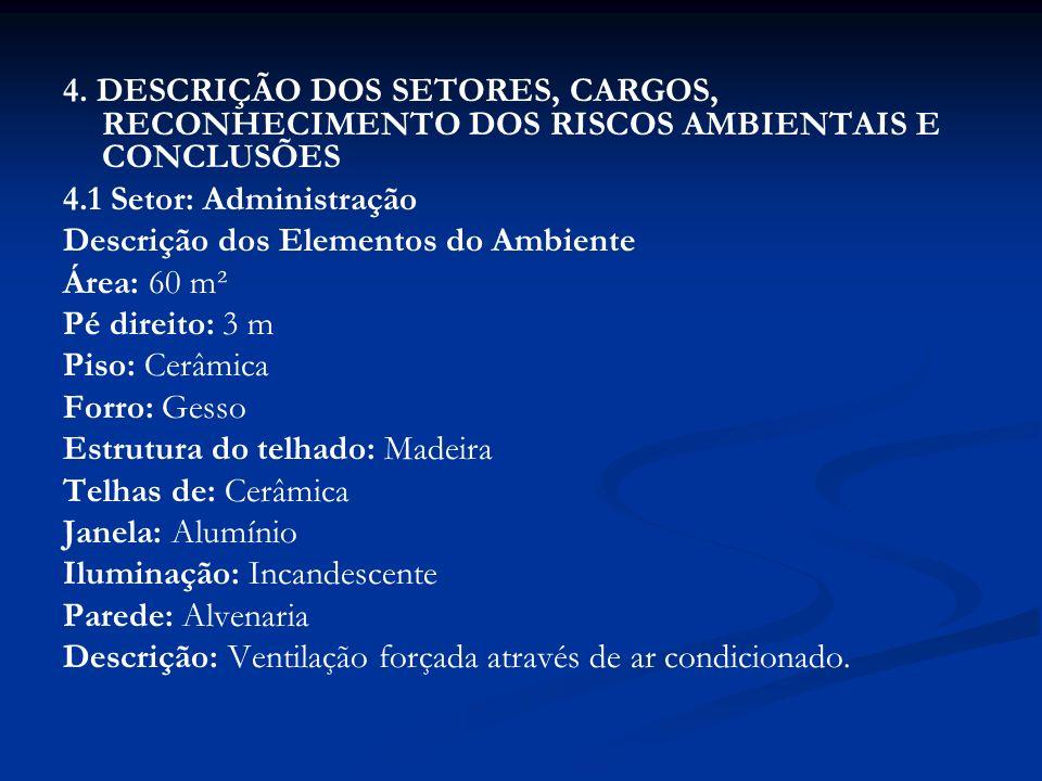 4. DESCRIÇÃO DOS SETORES, CARGOS, RECONHECIMENTO DOS RISCOS AMBIENTAIS E CONCLUSÕES