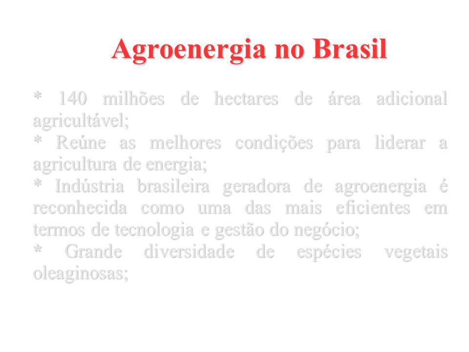 Agroenergia no Brasil * 140 milhões de hectares de área adicional agricultável; * Reúne as melhores condições para liderar a agricultura de energia;
