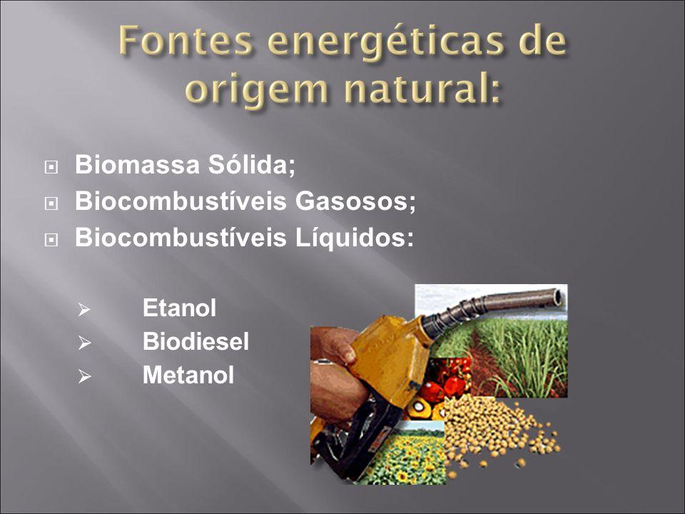 Biocombustíveis Gasosos; Biocombustíveis Líquidos: