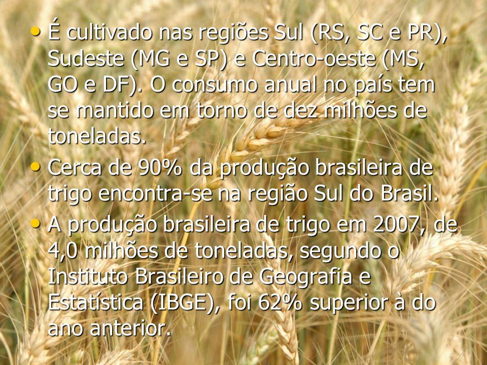É cultivado nas regiões Sul (RS, SC e PR), Sudeste (MG e SP) e Centro-oeste (MS, GO e DF). O consumo anual no país tem se mantido em torno de dez milhões de toneladas.