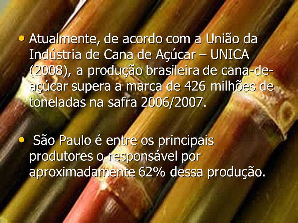 Atualmente, de acordo com a União da Indústria de Cana de Açúcar – UNICA (2008), a produção brasileira de cana-de-açúcar supera a marca de 426 milhões de toneladas na safra 2006/2007.