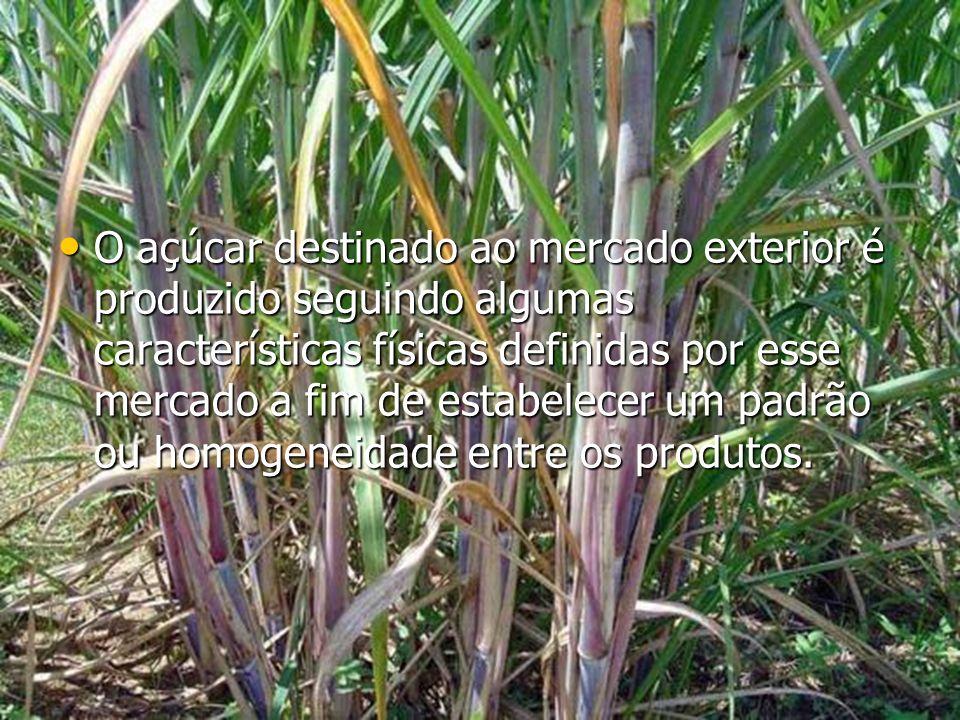 O açúcar destinado ao mercado exterior é produzido seguindo algumas características físicas definidas por esse mercado a fim de estabelecer um padrão ou homogeneidade entre os produtos.