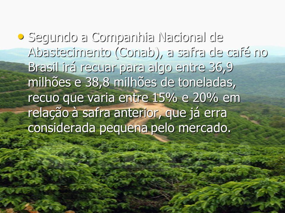 Segundo a Companhia Nacional de Abastecimento (Conab), a safra de café no Brasil irá recuar para algo entre 36,9 milhões e 38,8 milhões de toneladas, recuo que varia entre 15% e 20% em relação à safra anterior, que já erra considerada pequena pelo mercado.