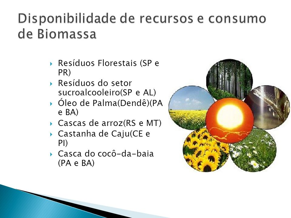 Disponibilidade de recursos e consumo de Biomassa