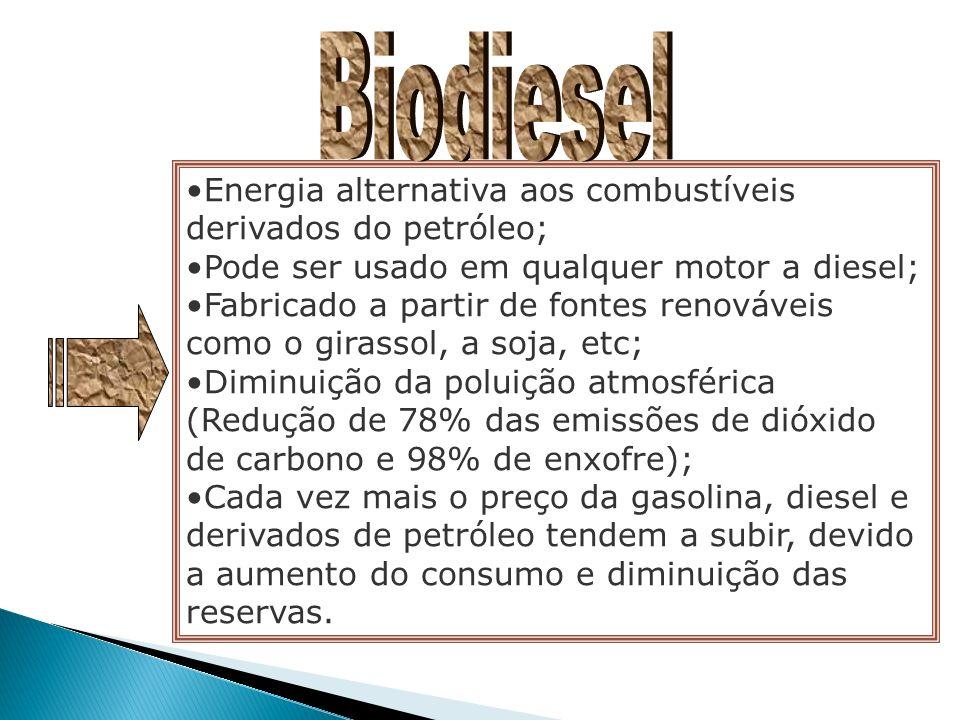 Biodiesel Energia alternativa aos combustíveis derivados do petróleo;