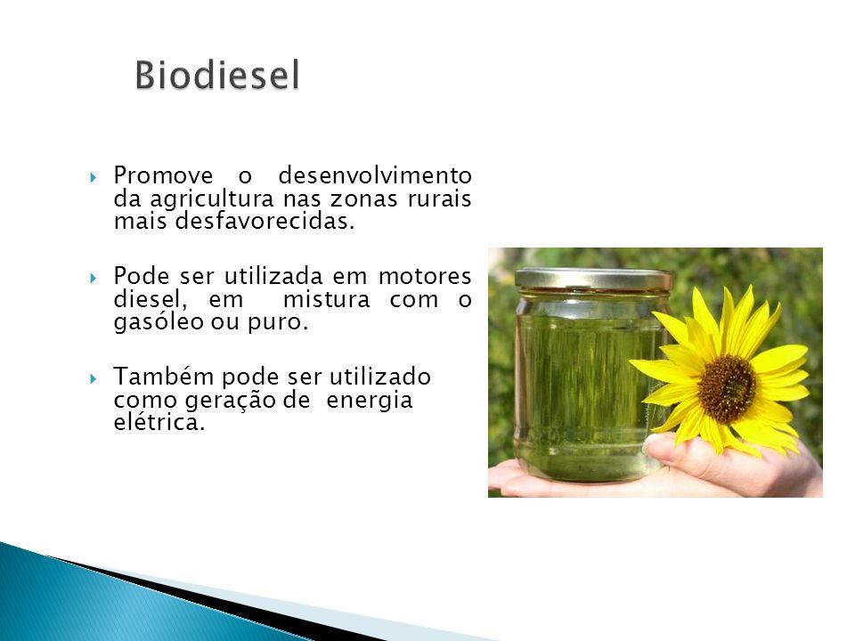 Biodiesel Promove o desenvolvimento da agricultura nas zonas rurais mais desfavorecidas.