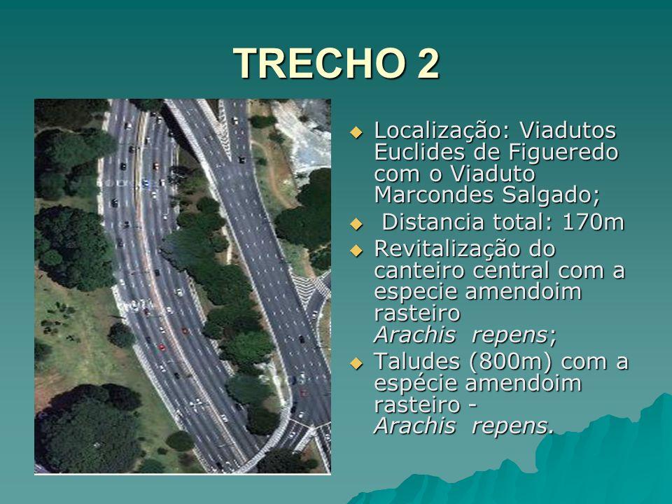TRECHO 2 Localização: Viadutos Euclides de Figueredo com o Viaduto Marcondes Salgado; Distancia total: 170m.