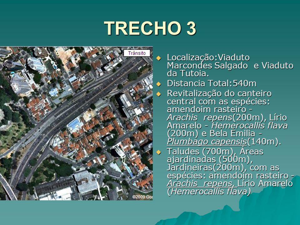 TRECHO 3 Localização:Viaduto Marcondes Salgado e Viaduto da Tutoia.