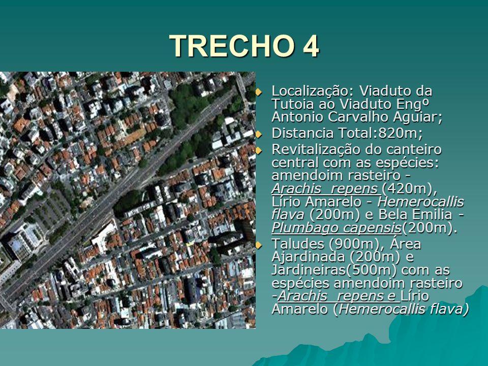 TRECHO 4 Localização: Viaduto da Tutoia ao Viaduto Engº Antonio Carvalho Aguiar; Distancia Total:820m;
