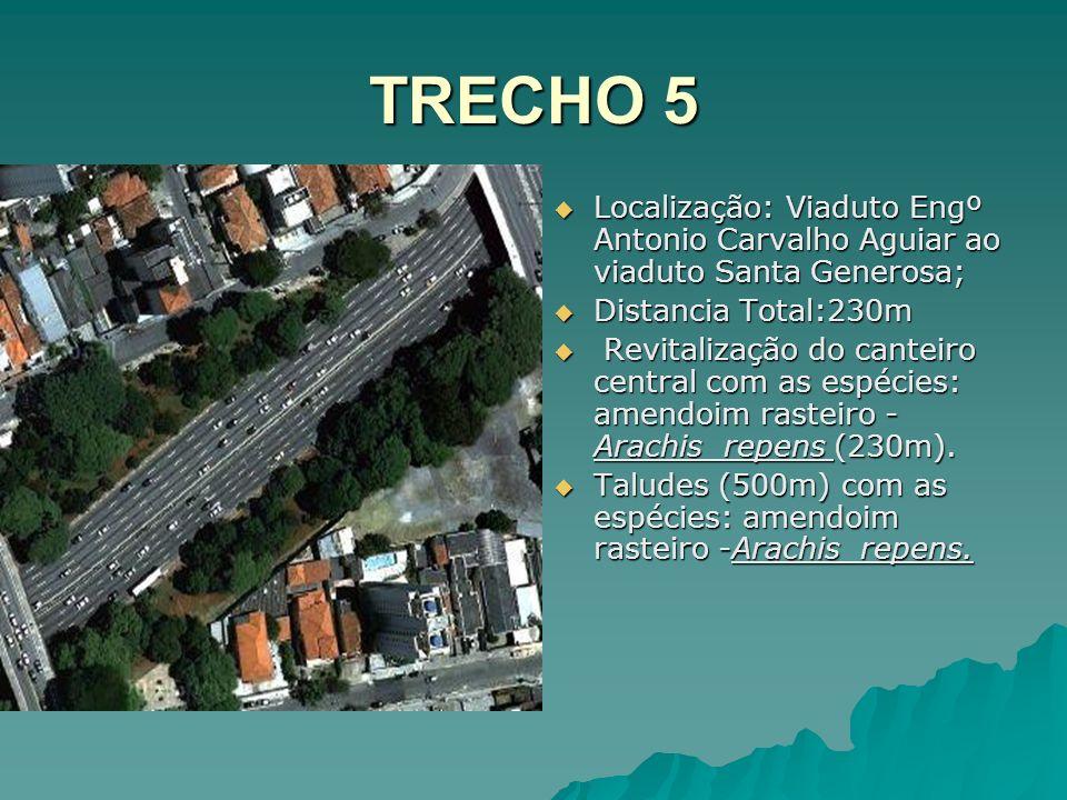 TRECHO 5 Localização: Viaduto Engº Antonio Carvalho Aguiar ao viaduto Santa Generosa; Distancia Total:230m.