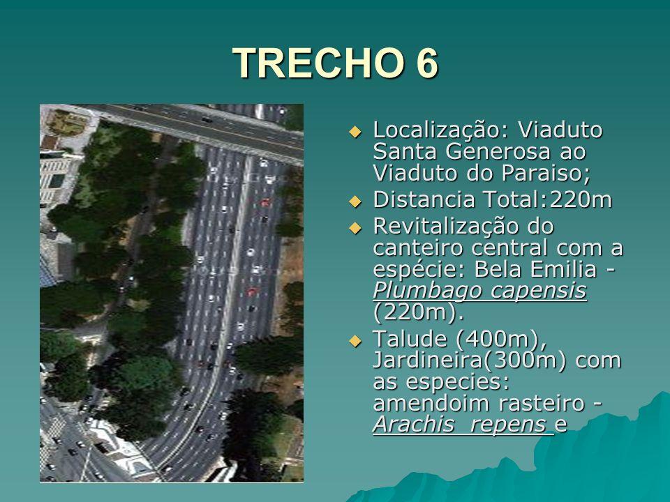 TRECHO 6 Localização: Viaduto Santa Generosa ao Viaduto do Paraiso;