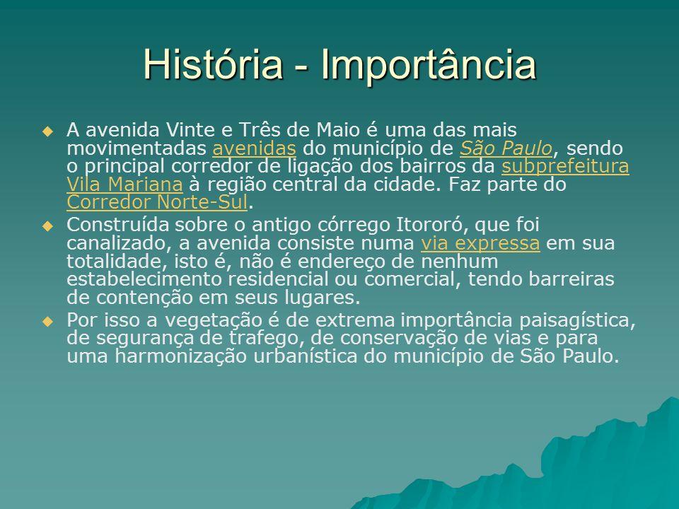 História - Importância