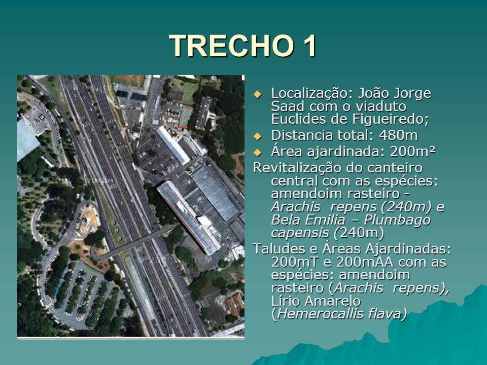 TRECHO 1 Localização: João Jorge Saad com o viaduto Euclides de Figueiredo; Distancia total: 480m.