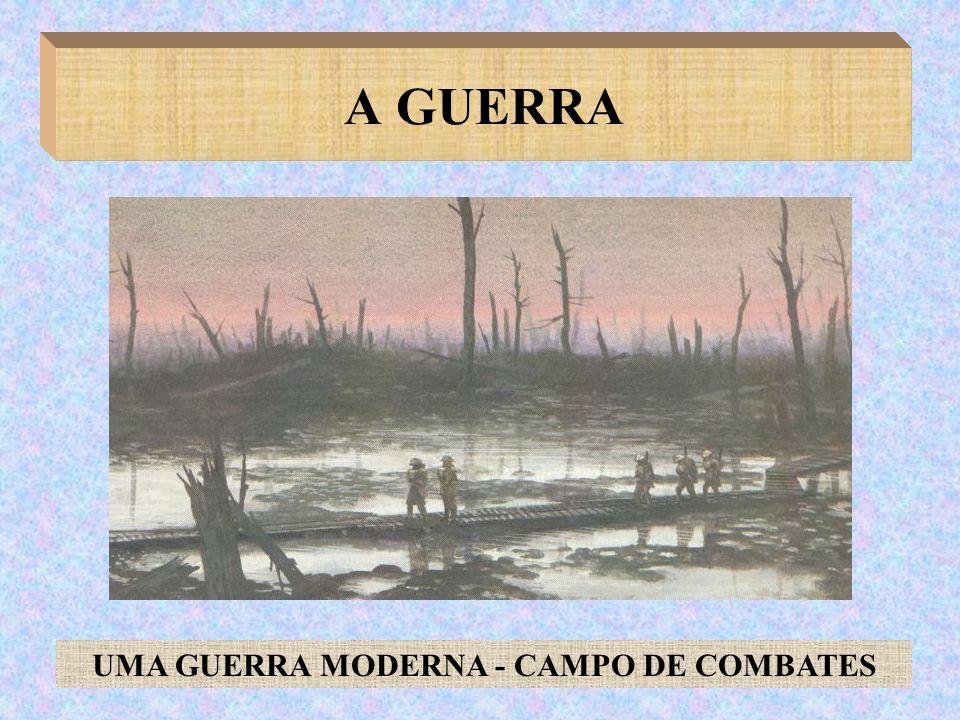 UMA GUERRA MODERNA - CAMPO DE COMBATES