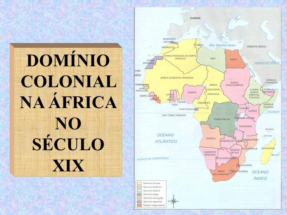 DOMÍNIO COLONIAL NA ÁFRICA NO SÉCULO XIX