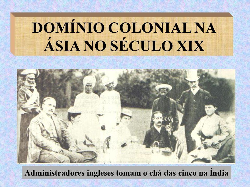 DOMÍNIO COLONIAL NA ÁSIA NO SÉCULO XIX